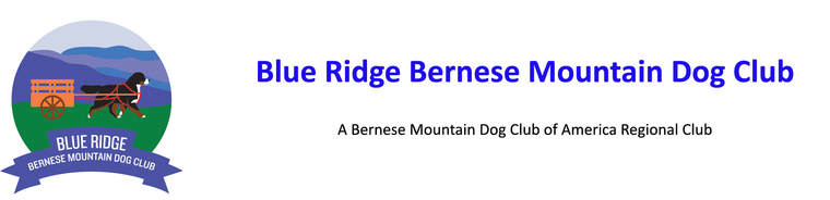 Blue Ridge Bernese Mountain Dog Club